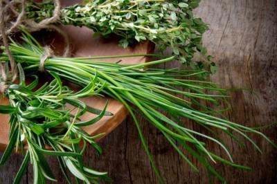 4-herbs-shutterstock_134384390