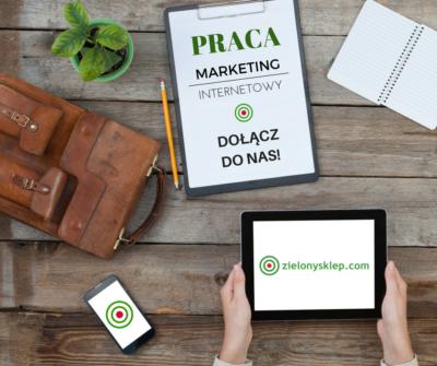 Praca marketing internetowy Kraków