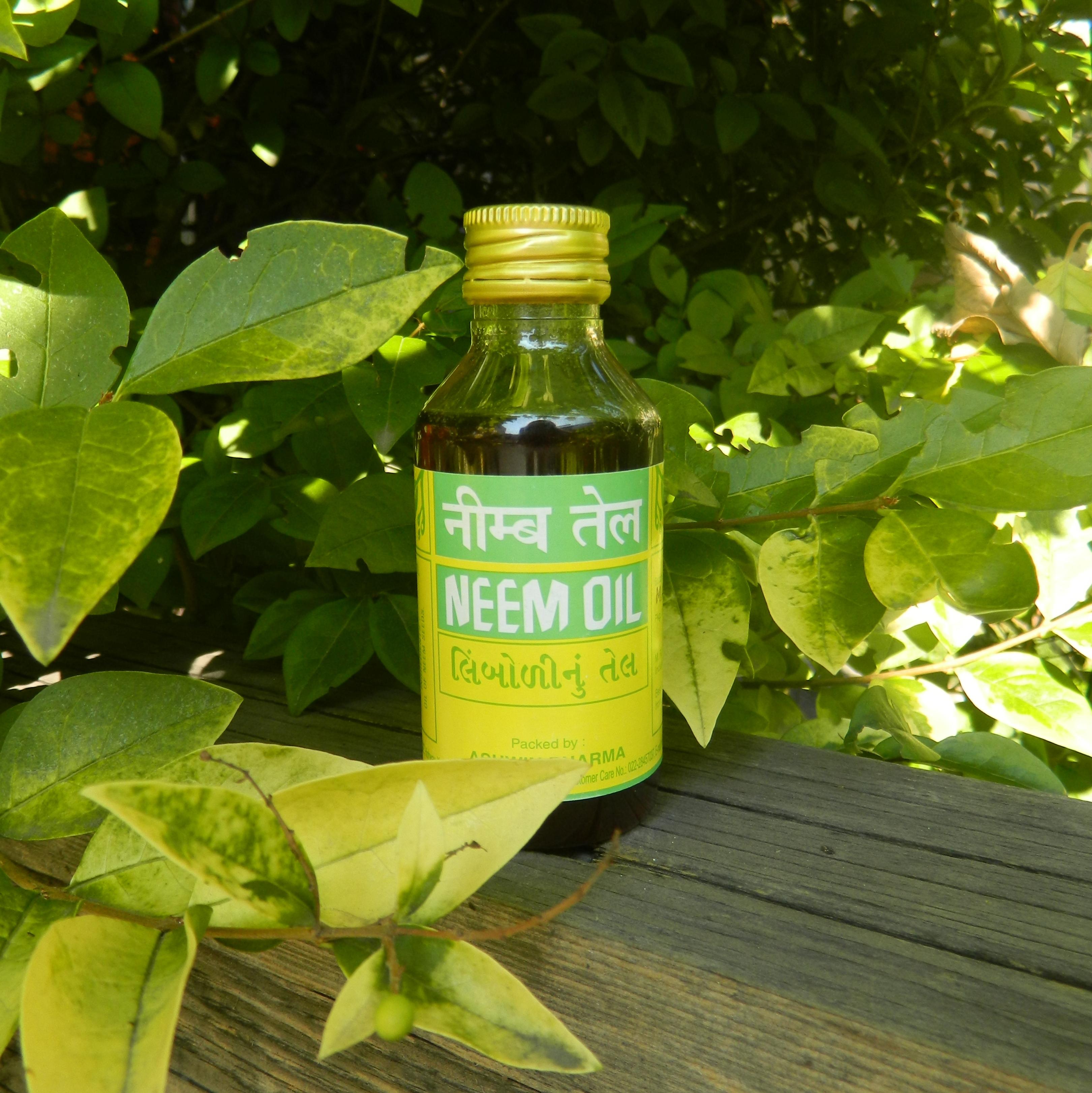 Neem Oil Olejek Z Neem Zielonysklepcom Blog
