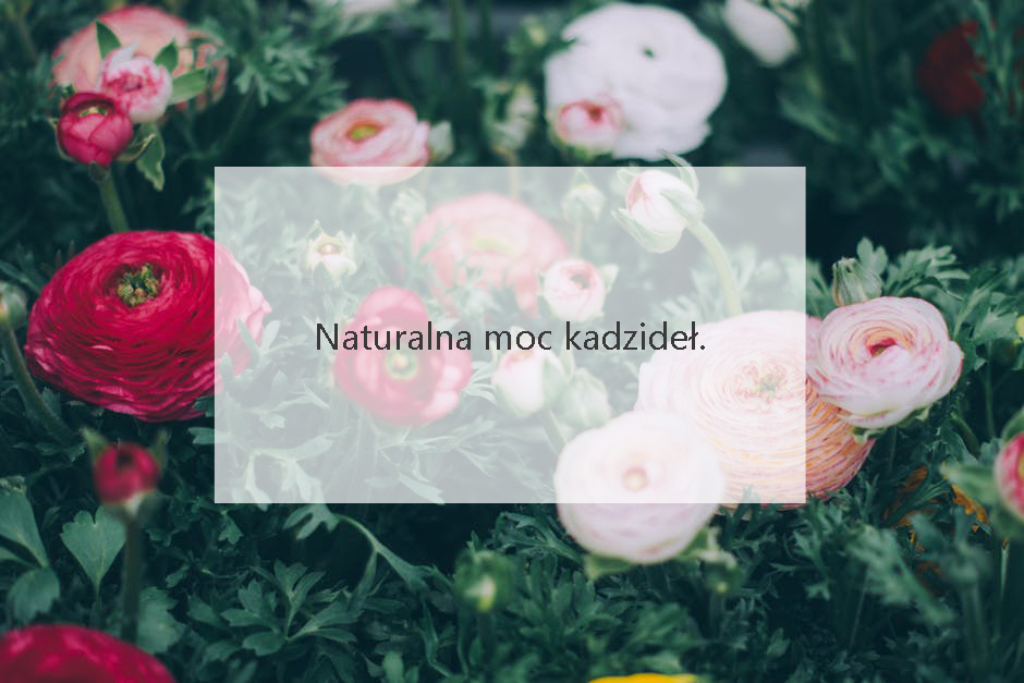 kadzidła natura